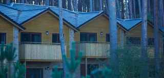 Lodges in a wintery forest