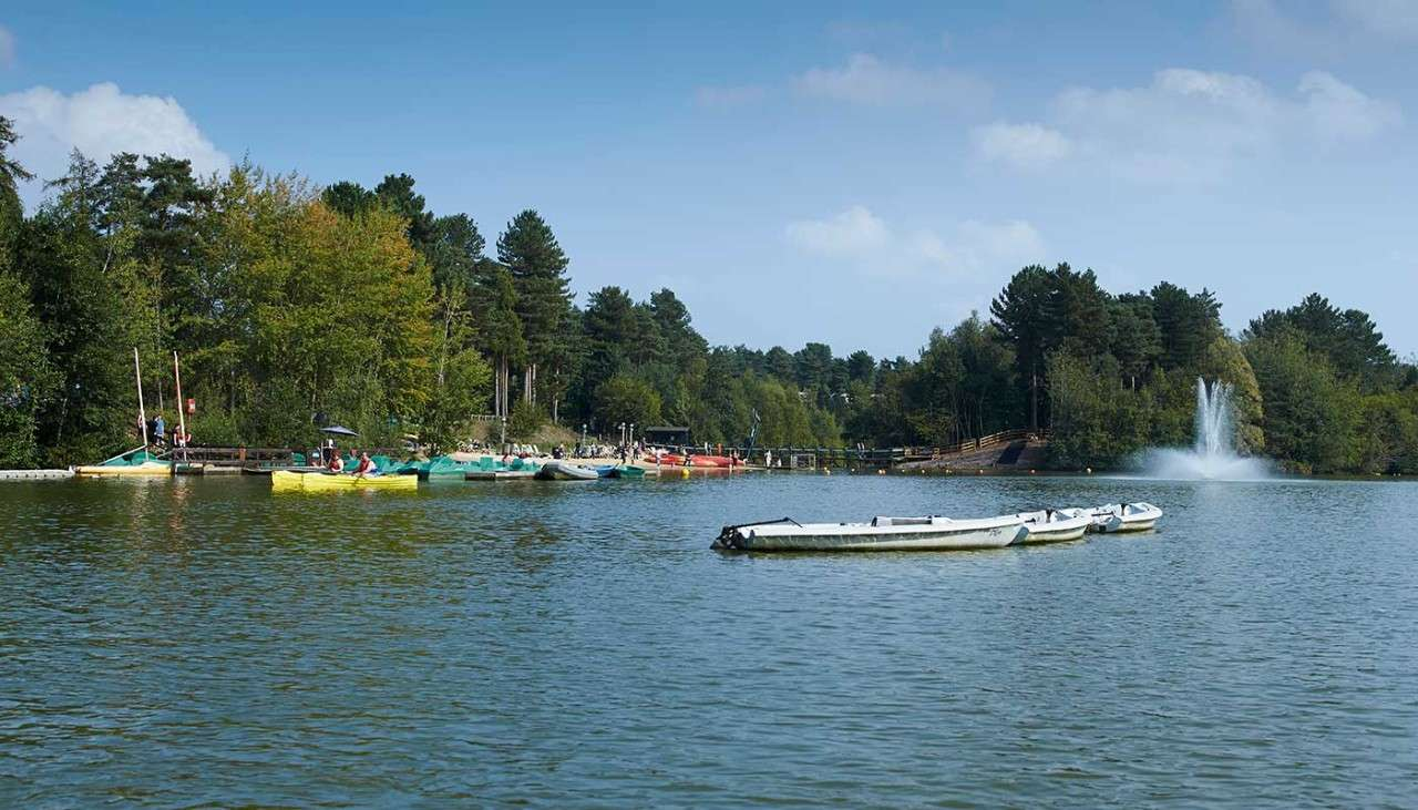 Elveden Forest lake with Forest behind