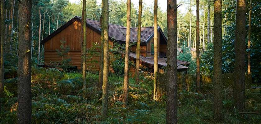Lodge in forest